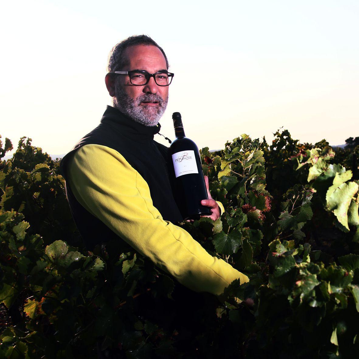 Nos vendanges Château Pépusque - Vins du Minervois